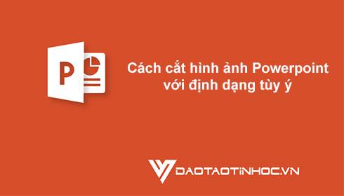 Cách cắt hình ảnh Powerpoint với định dạng tùy ý 5